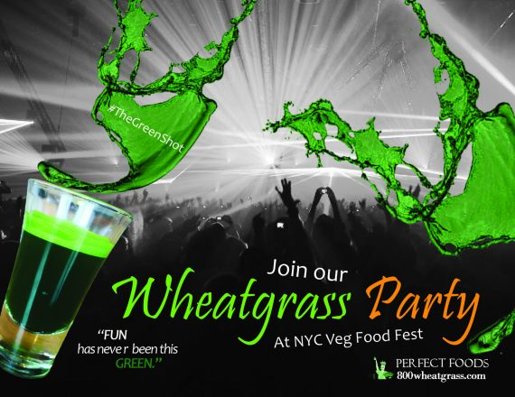 The Green Shot Perfect Foods Wheatgrass