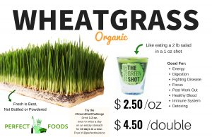Wheatgrass Poster with price