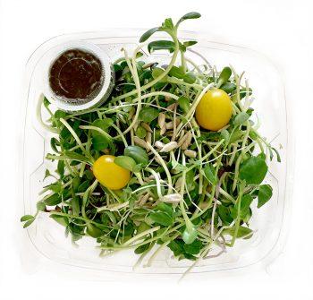 Microgreen Salad