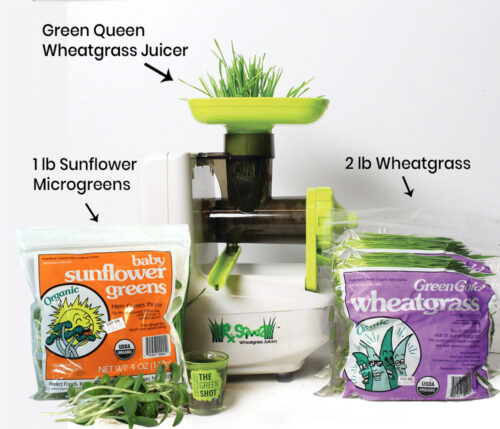 perfect foods wheatgrass & microgreens