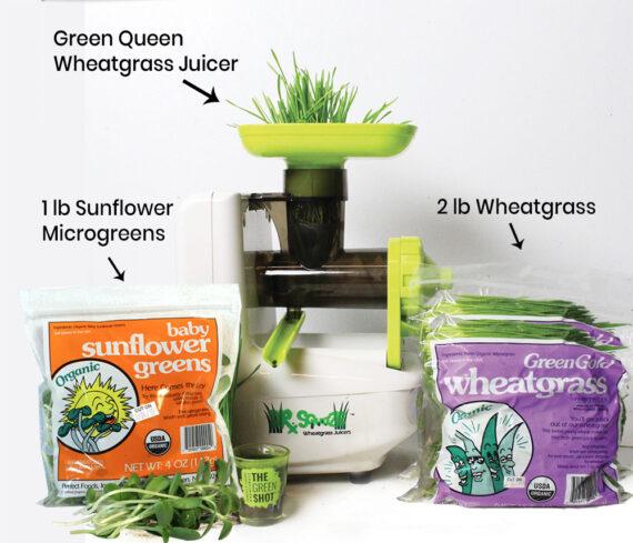 perfect foods wheatgrass & microgreens