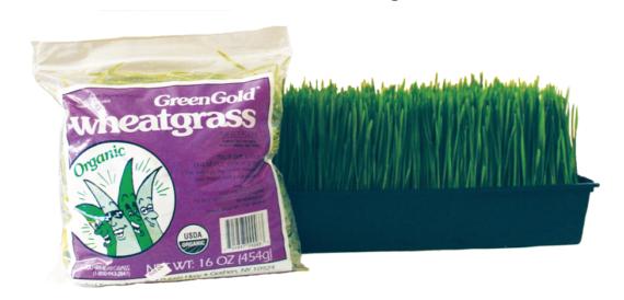 wheatgrass cut lb