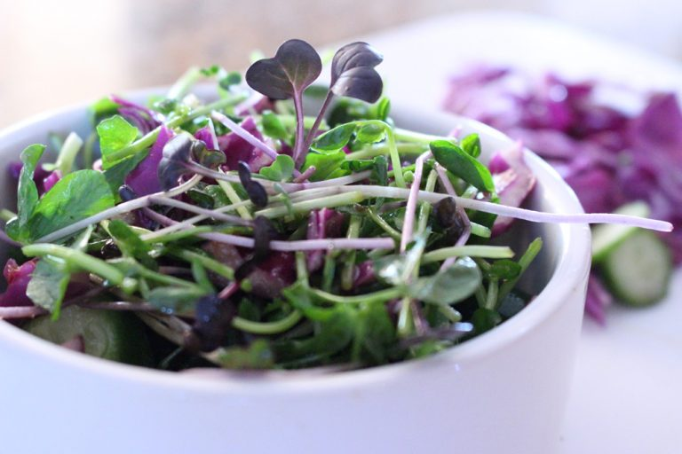 Pea Cabbage Salad smaller