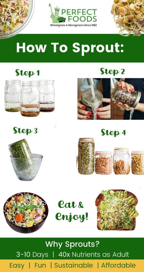 how to sprout scaled e1608604763540