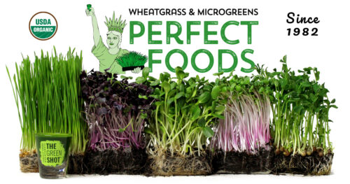 perfect foods wheatgrass microgreens