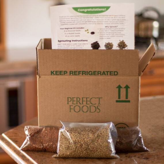 seed sprouting kit square